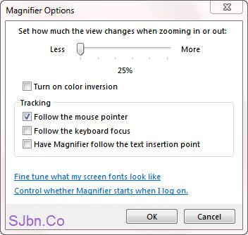 Magnifier Options