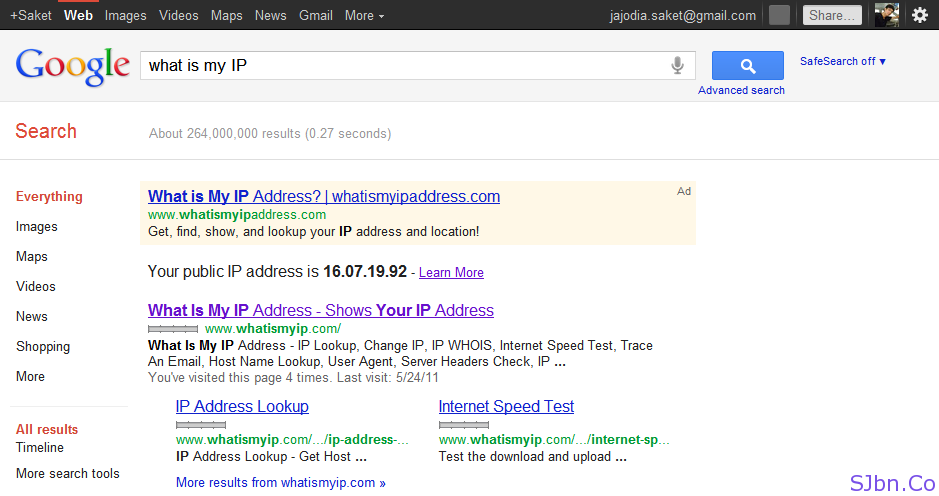 Google Search Result for what is my IP