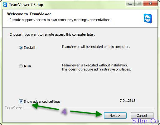 TeamViewer - Show advance settings